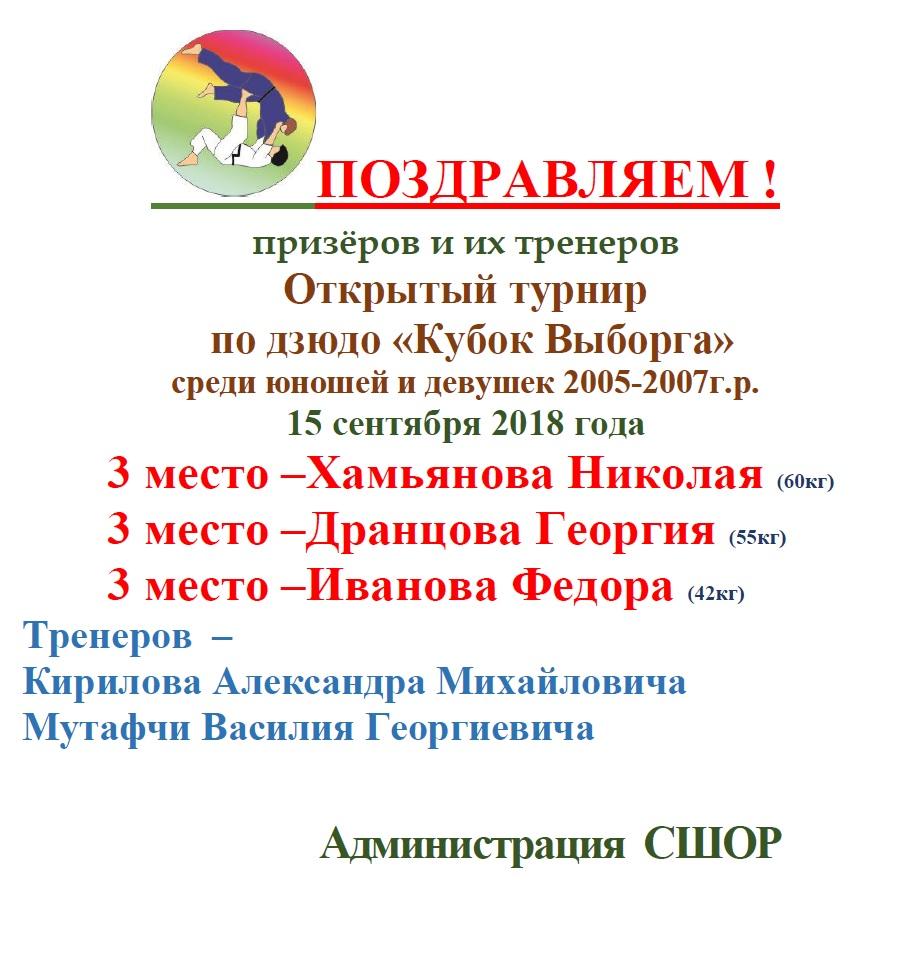 Кубок Выборга
