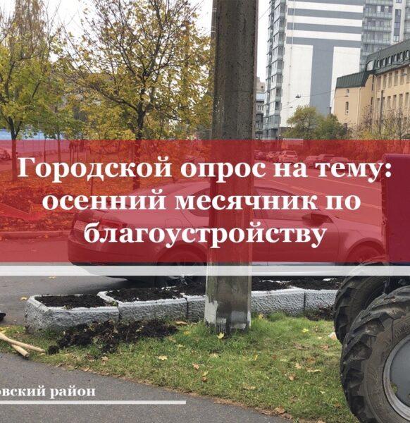 Опрос по проведению осенней уборки территорий районов Санкт-Петербурга